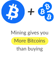 image with crypto info